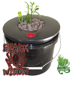 Black Widow Hydroponics DWC 5 Gal. Grow Bucket