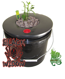 Deep Water Culture DWC Hydroponic System one bucket 3.5 gallon